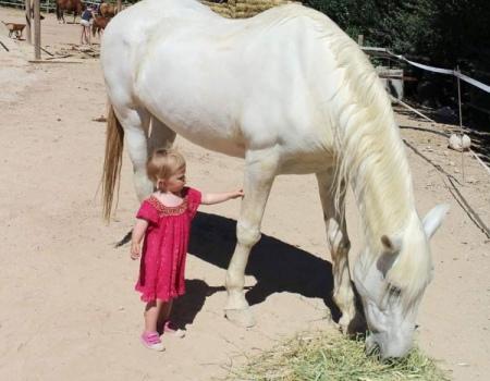 riding-holidays-andalucia-spain-cortijo-los-lobos-accommodation-bitless-horsemanship