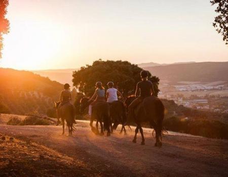 riding-holidays-andalucia-spain-cortijo-los-lobos-accommodation-bitless12