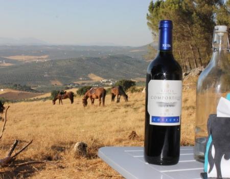 riding-holidays-andalucia-spain-cortijo-los-lobos-accommodation-bitless14