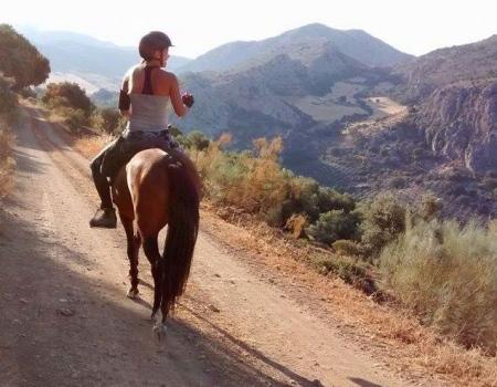 riding-holidays-andalucia-spain-cortijo-los-lobos-accommodation-bitless15