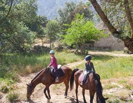 riding-holidays-andalucia-spain-cortijo-los-lobos-accommodation-bitless19