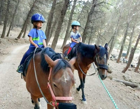 riding-holidays-andalucia-spain-cortijo-los-lobos-accommodation-bitless24