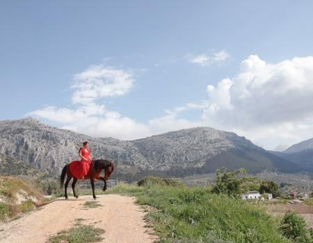riding-holidays-andalucia-spain-cortijo-los-lobos-accommodation-bitless28
