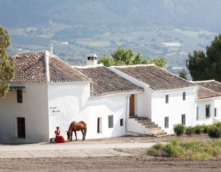 riding-holidays-andalucia-spain-cortijo-los-lobos-accommodation-bitless29