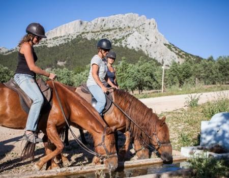 riding-holidays-andalucia-spain-cortijo-los-lobos-accommodation-bitless32