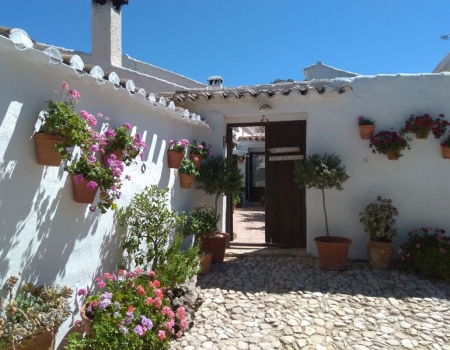 riding-holidays-andalucia-spain-cortijo-los-lobos-accommodation-bitless38