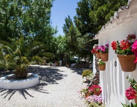riding-holidays-andalucia-spain-cortijo-los-lobos-accommodation-bitless41
