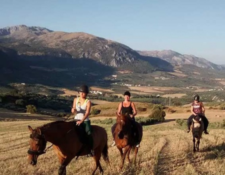 riding-holidays-andalucia-spain-cortijo-los-lobos-accommodation-bitless43
