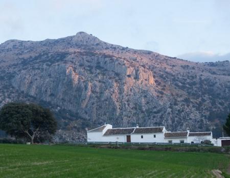 riding-holidays-andalucia-spain-cortijo-los-lobos-accommodation-bitless50