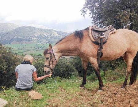 riding-holidays-andalucia-spain-cortijo-los-lobos-accommodation-bitless56