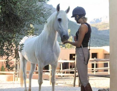 riding-holidays-andalucia-spain-cortijo-los-lobos-accommodation-bitless69