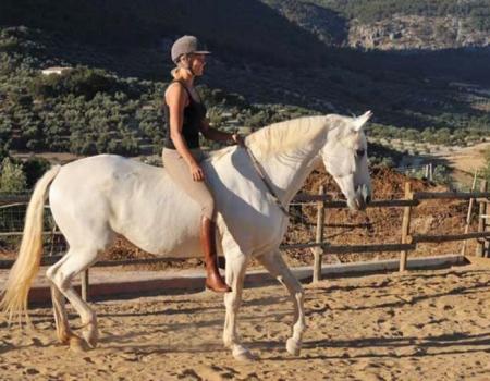 riding-holidays-andalucia-spain-cortijo-los-lobos-accommodation-bitless70