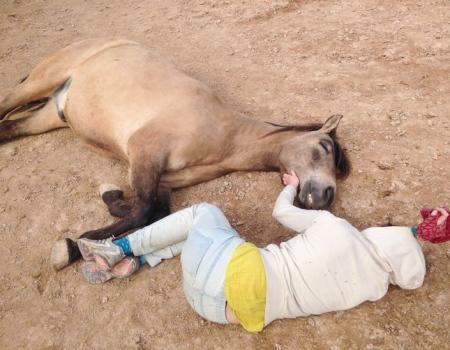 riding-holidays-andalucia-spain-cortijo-los-lobos-accommodation-bitless73