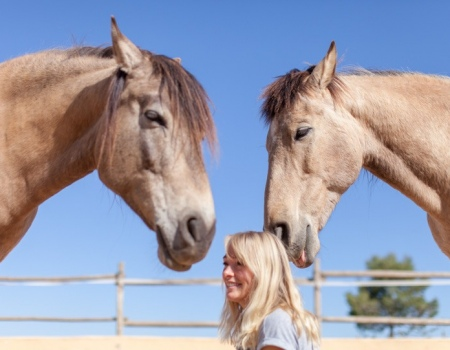 riding-holidays-andalucia-spain-cortijo-los-lobos-accommodation-bitless76