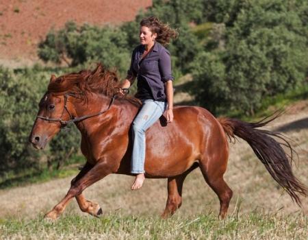 riding-holidays-andalucia-spain-cortijo-los-lobos-accommodation-bitless8