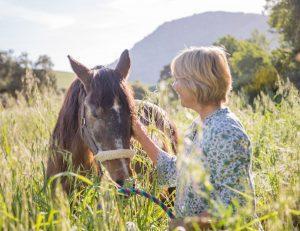 natural horsemanship courses in spain